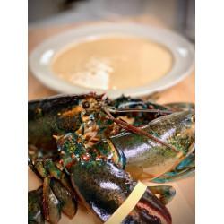 GW Fins Lobster Bisque