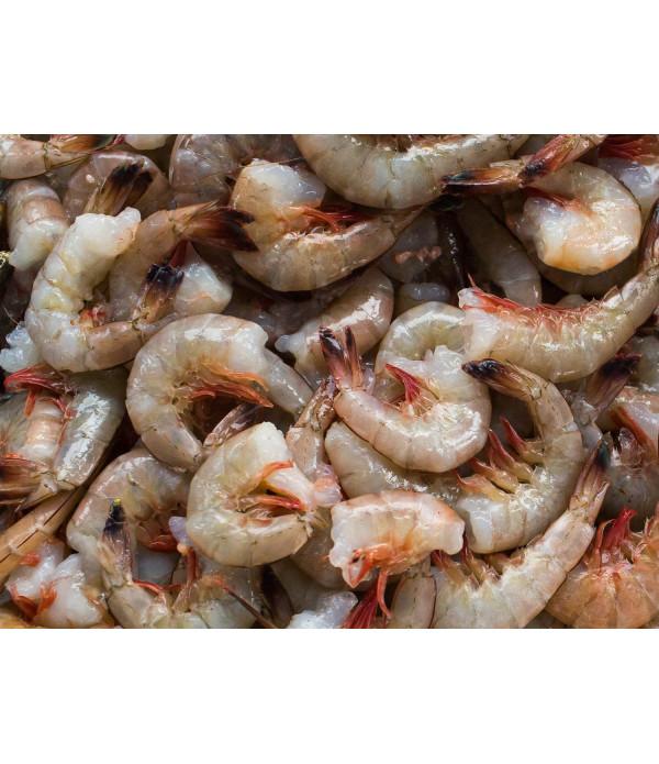 Gulf Shrimp Headless 21/25 Ct 5lb